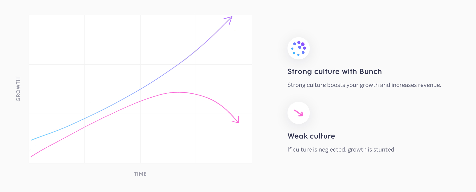 strong culture Bunch